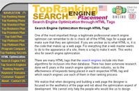 Search Engine Optimization by 101SearchEngine.com